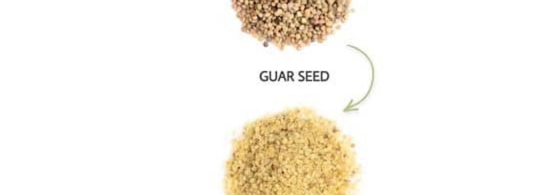 مراحل تولید گوارگام