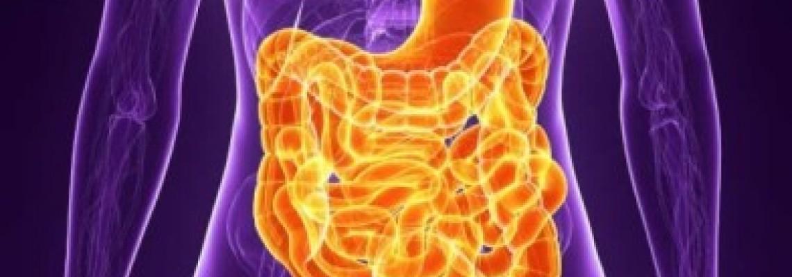 بهبود سیستم گوارش بدن با این ماده غذایی