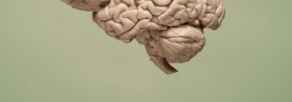 سلول های نانو جایگزین سلول های حافظه
